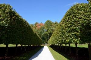 Italian Garden in The Mount